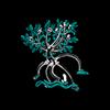 La Mangrovia